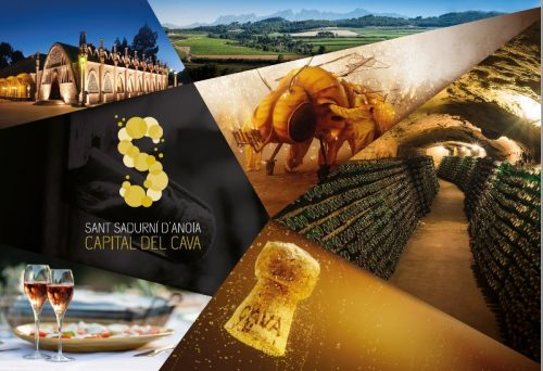 How to Visit Cava from Barcelona? – Tips and recommendations from a Cavamaker